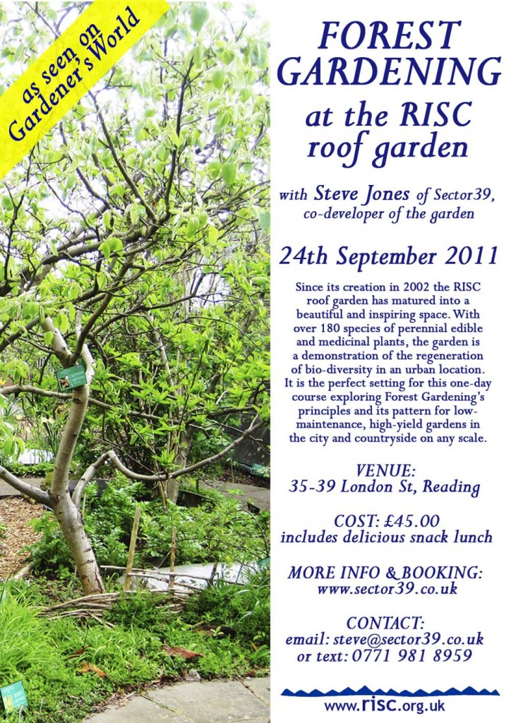 Forest Gardening on the RISC roof
