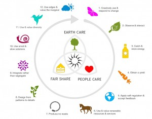 permaculture-infographic