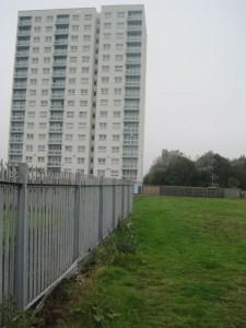 Denecliff. overlooking the site for the new garden