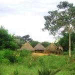 Many Ugandan's still live in traditional villages