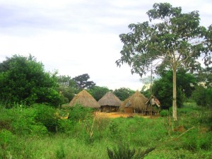 Many Ugandan's still live in traditional villages