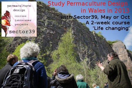 permaculture design course advert